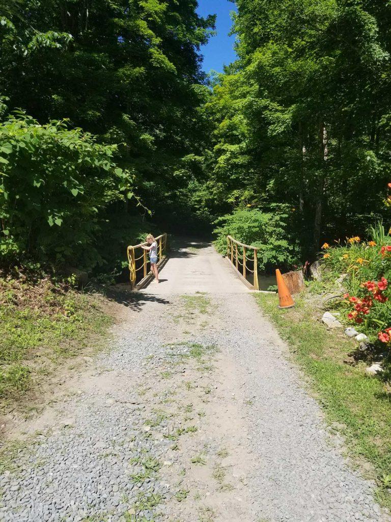 Road to Bridge